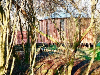 Zen Den wood view